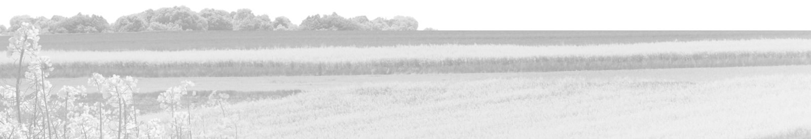 Oferta Lubelskiego Ośrodka Doradztwa Rolniczego