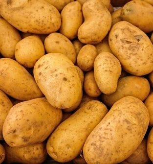 Ziemniaki Ekologiczne z certyfikatem