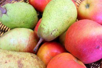 Owoce z Gospodarstwa Sadowniczego