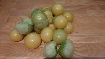 Miechunka pomidorowa (tomatillos)