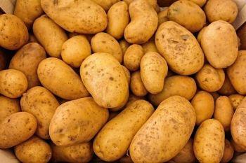 ziemniak odpadowy